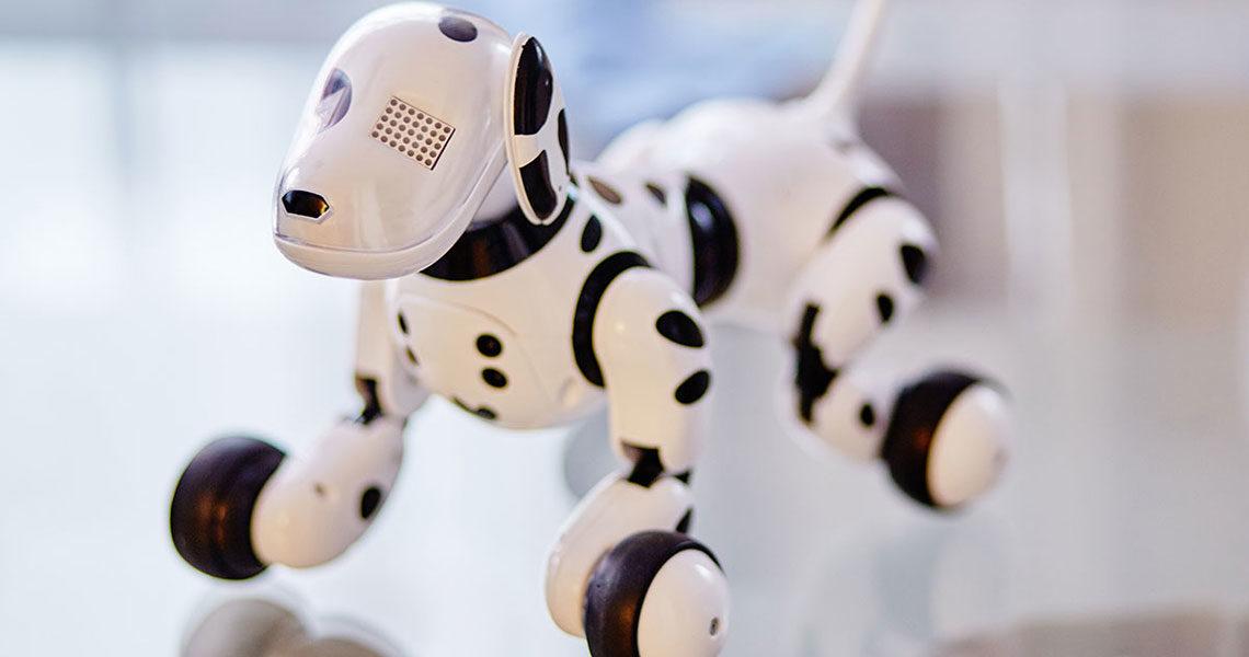Comparatif : meilleurs chiens robots (tests, avis, recommandations, conseils d'achat)