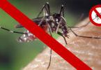 Meilleure lampe anti moustique efficace