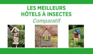 Comparatif des meilleurs hôtels à insectes