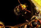 meilleurs hôtels à insectes