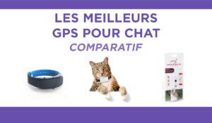 Comparatif des 3 meilleurs gps pour chat